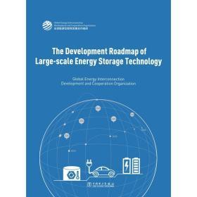 大規模儲能技術發展路線圖(英文版) 能源科學 全球能源互聯網發展合作組織