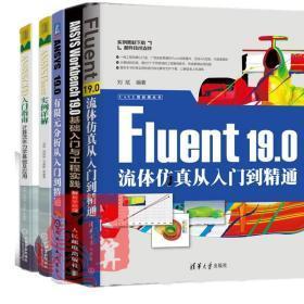 5册Fluent 19.0流体仿真从入门到精通+ANSYS Workbench 19.0基础入门与工程实践有限元分析CFD入门指南计算流体力学应用软件教程书