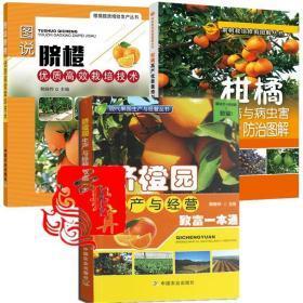 【柑橘脐橙种植技术全3本】脐橙园生产与经营致富一本通+高产优质栽培病虫害防治图解+优质高效栽培技术 桔子橙柚果树整形修剪教程