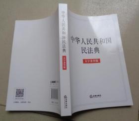 中华人民共和国民法典(大字条旨版):Y1