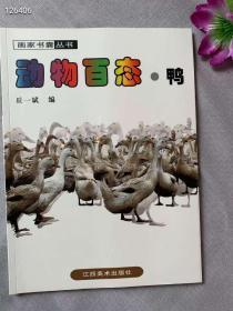画家书囊丛书 动物百态 鸭 绘画素材照片 美术工具书 16开全彩 江西美术出版社 特价惠友30包邮