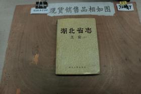 湖北省志工业(上)
