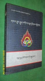 藏语常用新术语词汇(藏文)
