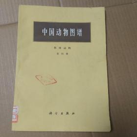 中国动物图谱 软体动物 第四册