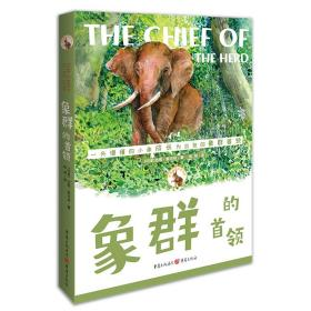 ☆百年传奇动物文学书系:象群的首领【塑封】