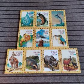 世界动物图鉴  全十册