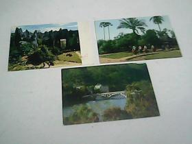 3张外文出版社 明信片