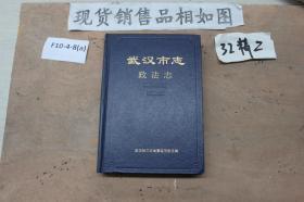 武汉市志政法志