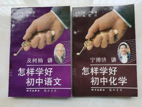 怎样学好初中语文、化学金钥匙丛书