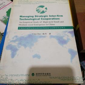 中国高科技中小企业技术合作战略与管理的实证研究 包邮