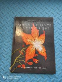 Another Chance to Get It Right Hc (2016 Edition)