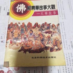 佛经精华故事大观 天神故事