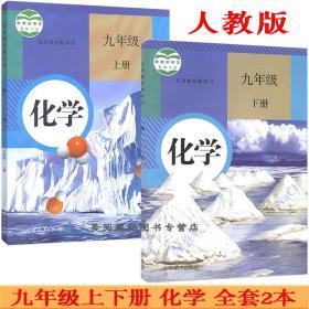 人教版初中化学课本全套2本