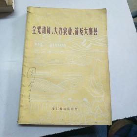 全党动员,大办农业,普及大寨县