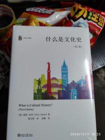 什么是文化史(第三版)