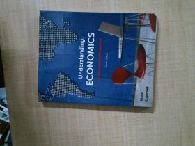 【外文原版】 UNDERSTANDING ECONOMICS A CONTEMPORARY PERSPECTIVE 从当代视角理解经济学
