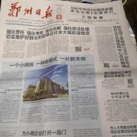 郑州日报2020年12月17日