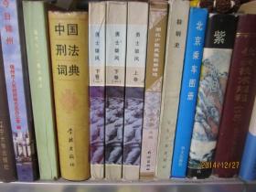 中国刑法词典