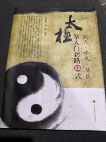 武氏·杨氏·陈氏太极拳入门套路33式