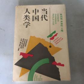 当代中国人类学