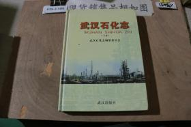 武汉石化志 下卷