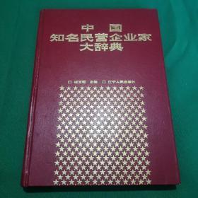中国知名民营企业家大辞典