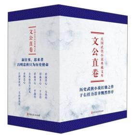民国武侠小说典藏文库 文公直卷