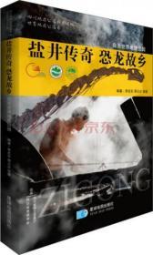 正版二手  盐井传奇 恐龙故乡  李忠东、邢立达、邹蓉  著  9787547120507