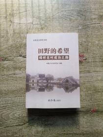 田野的希望榜样名村成功之路/红色文化研究书库.