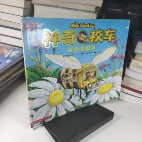 神奇的校车:奇妙的蜂巢