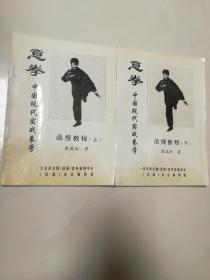 意拳。中国现代实战拳学函授教程(上下册)