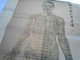 1959年《针灸取穴参考图》(一.二)