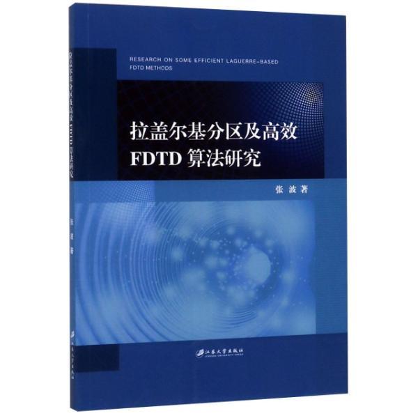 拉盖尔基分区及高效FDTD算法研究