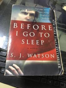 Before I Go to Sleep:A Novel