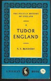 B000SFI1SU Tudor England (The Pelican History of England, Vol. 5)-B000SFI1SU都铎英格兰(英国鹈鹕历史,第5卷)