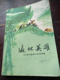 遍地英雄——江苏民兵革命斗争故事集