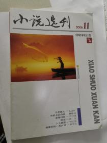 小说选刊·2008年第11期