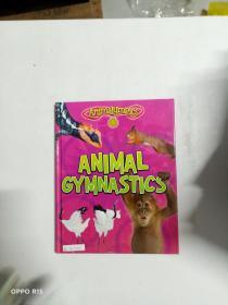 【外文原版】】ANIMAL GYMNASTICS
