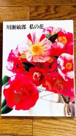 川瀬敏郎 私の花 (川濑敏郎 私的花)1996年 讲谈社 软皮 大16开 135页 插花图版 花道