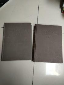 中国大百科全书 外国文学(全二册)精装乙种本 85年1版4印(没勾画)