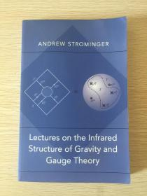 Lectures on the Infrared Structure of Gravity and Gauge Theory        英文原版