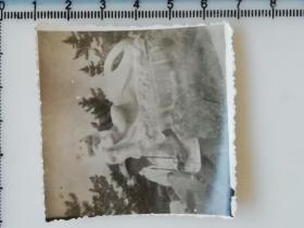 20201213-2 年代老照片 拿着照相机