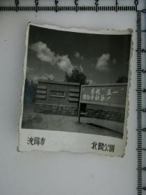 20201213-6 年代老照片  文革 沈阳 北陵公园 伪满建筑 庆祝五一国际劳动节