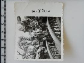 20201213-2 年代老照片 苏州狮子林留影