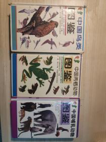 中国鸟类图鉴、中国两栖动物图鉴、中国哺乳动物图鉴三本合售