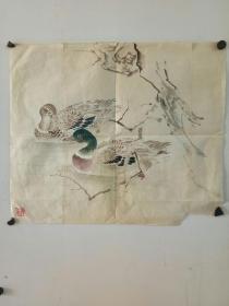 约解放前后  无款老画 画稿  双鸭子图 尺寸46x40