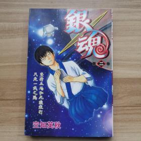 银魂 (第2卷)
