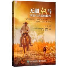 正版 无疆驭马 安涛 电子工业出版社 9787121344053