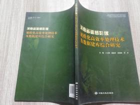 河南省遥感影像规模化高效率处理技术及数据建库综合研究