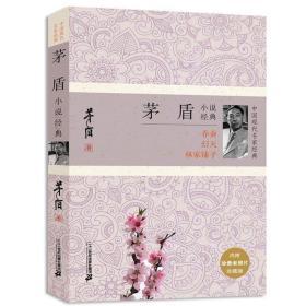 中国现代名家经典 茅盾小说经典 矛盾小说作品集 现当代文学小说 平凡的世界不平凡的故事 林家铺子 畅销小说书籍